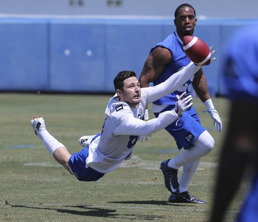 Winnipeg Blue Bombers  wide receiver Drew Morgan (81) is defended by defensive back Marcus Rios (25) during a team mini- camp at IMG Academy in Bradenton Florida on Wednesday, April 24, 2019.  Photo by Tom O'Neill