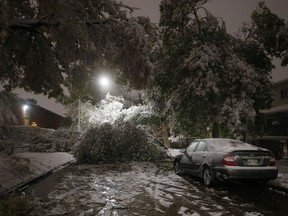 An early winter storm with heavy wet snow caused fallen trees, many on cars, and power lines in Winnipeg early Friday morning, October 11, 2019. Some areas of Manitoba are now watching rivers and lakes closely as the province warns rain could bring high water, or even flooding, 11 days after the province was hit by a devastating snowstorm.