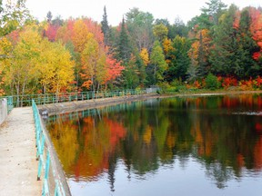Changing colours are one of things people cite when they say fall is their favourite season.