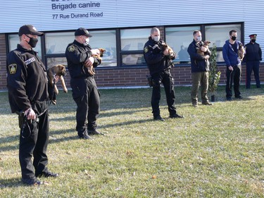 Winnipeg Police Service K9 Unit handlers and WPS volunteers hold the pups during a press conference at the WPS Canine Unit training centre on Friday, Oct. 23, 2020, to formally introduce five of a litter of seven puppies born into its in-house breeding program on Sept. 1. This is the first time a litter has been bred through the program using artificial insemination. The pups' mother is Police Service Dog (PSD) Ellie using the sperm of former PSD Judge, who provided samples nine years ago for the artificial insemination. The process allows WPS to combine the highly sought-after traits of former PSD Judge and PSD Ellie to ensure the highest quality K9s are working alongside officers in the community's service. Judge retired from the service in 2014 and passed away in 2015.