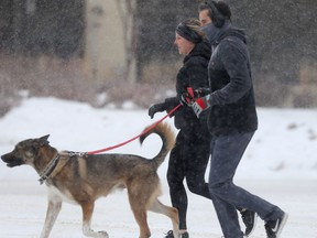 Two joggers with a dog in the snow, in Winnipeg on Saturday.